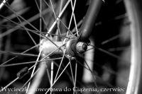 Ciazen_2011-7