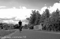 Gultowy_2012-17